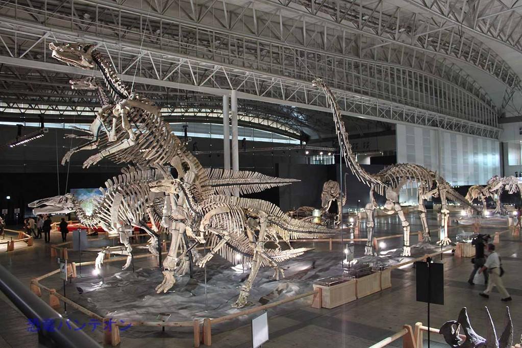 諸城の恐竜たち