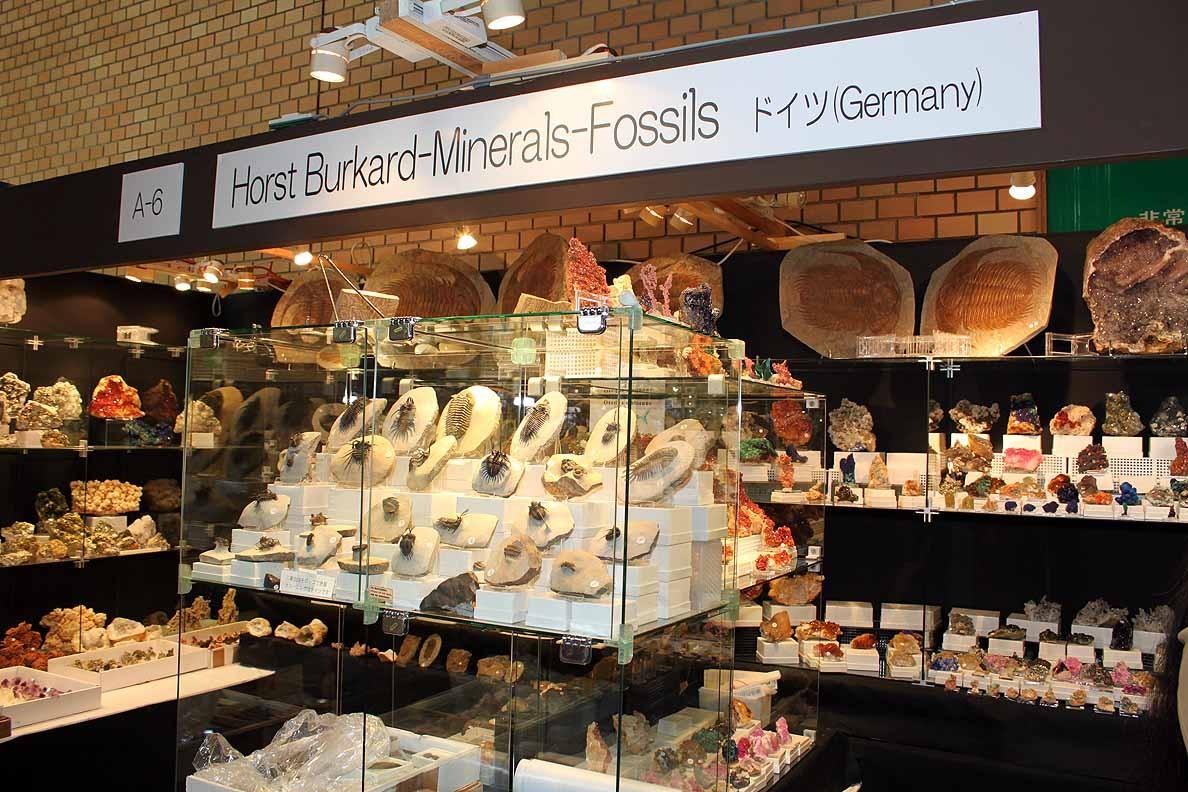 Horst Burkard Minerals-Fossils A-6 こちらも毎年店を出しています。