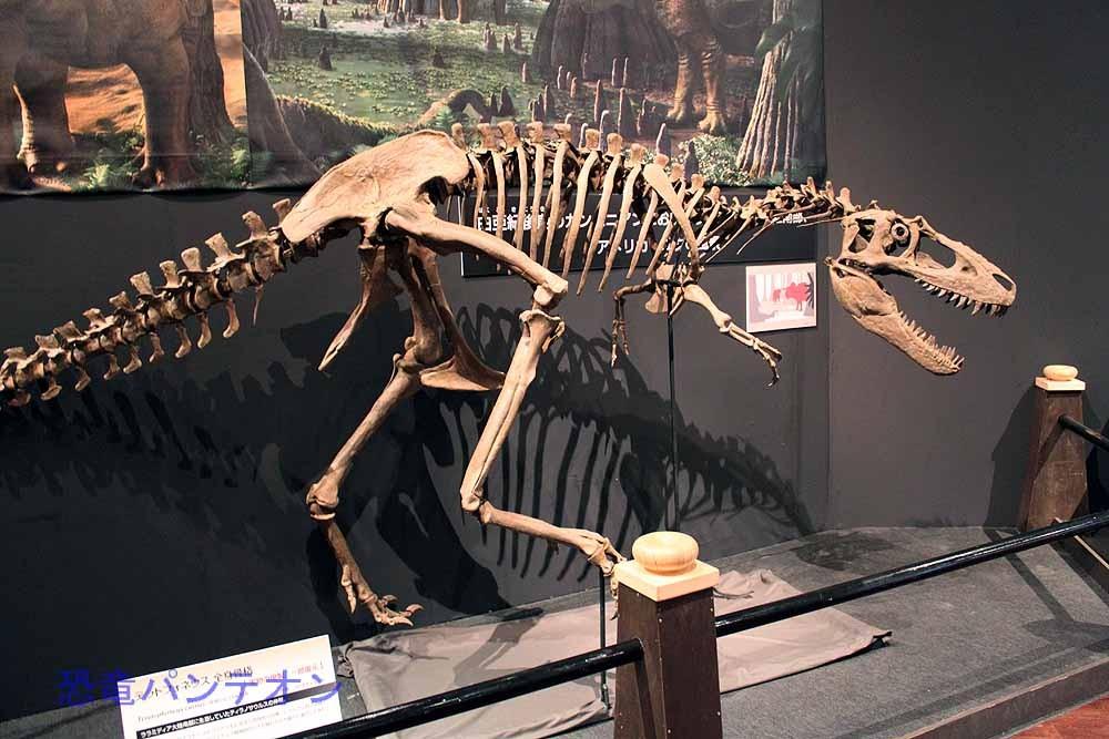 カンパニアンのユタに生息していた肉食恐竜、テラトフォネウス Teratophoneus