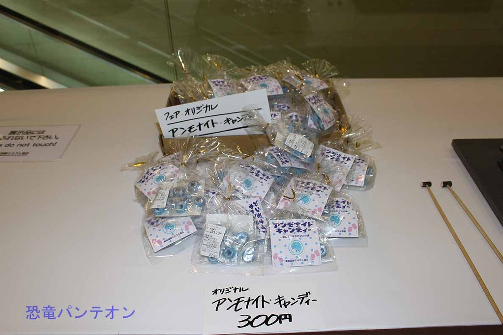 第二会場 アンモナイトキャンディー 300円