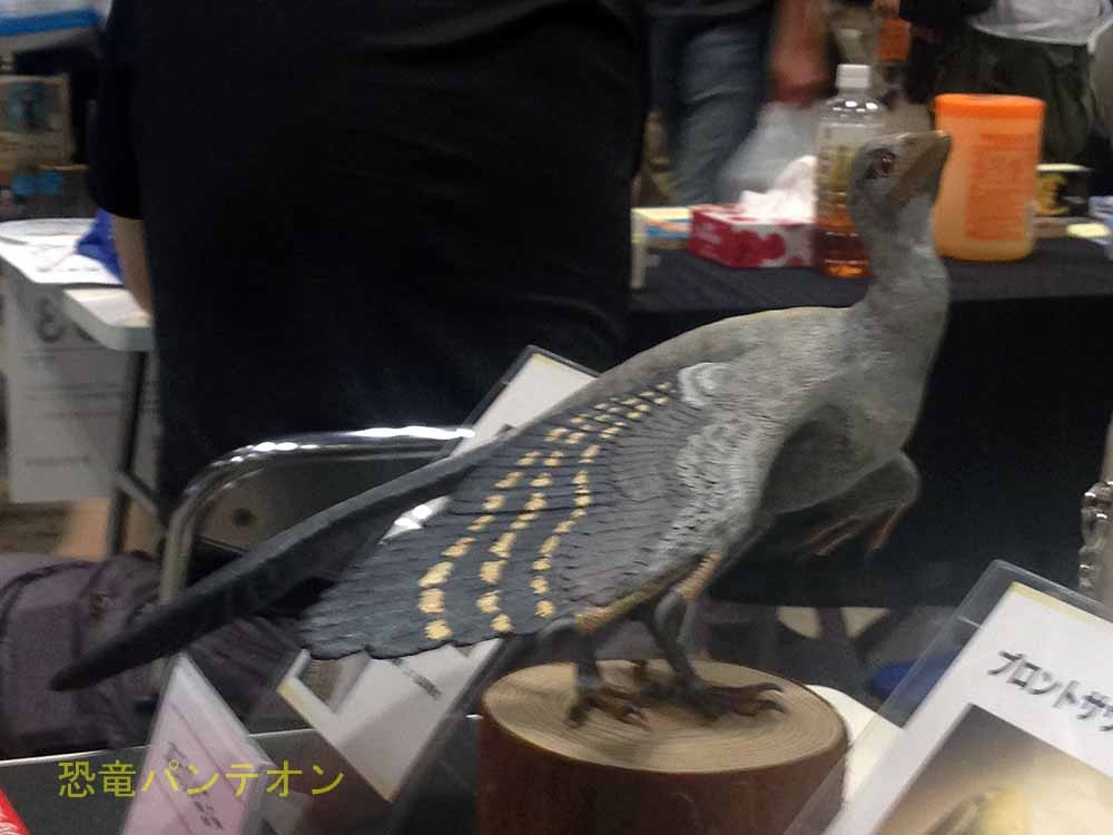 エルステッド & fragi-ragi 始祖鳥ですね