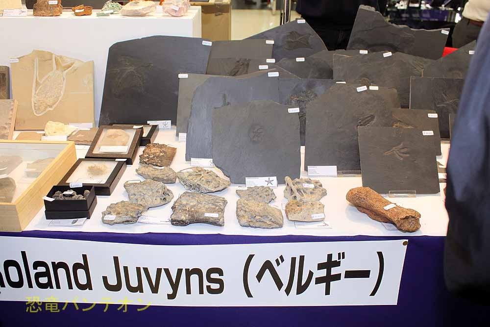 Roland Juvyns ベルギーのお店です。