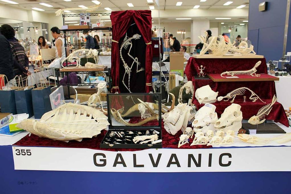 GALVANIC 骨好きにはたまらない!