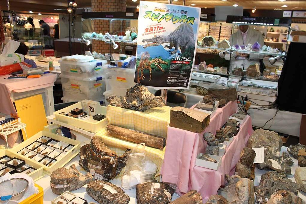 ドリームストーンコレクション(107) 群馬県立自然史博物館スピノサウルス展ポスターも
