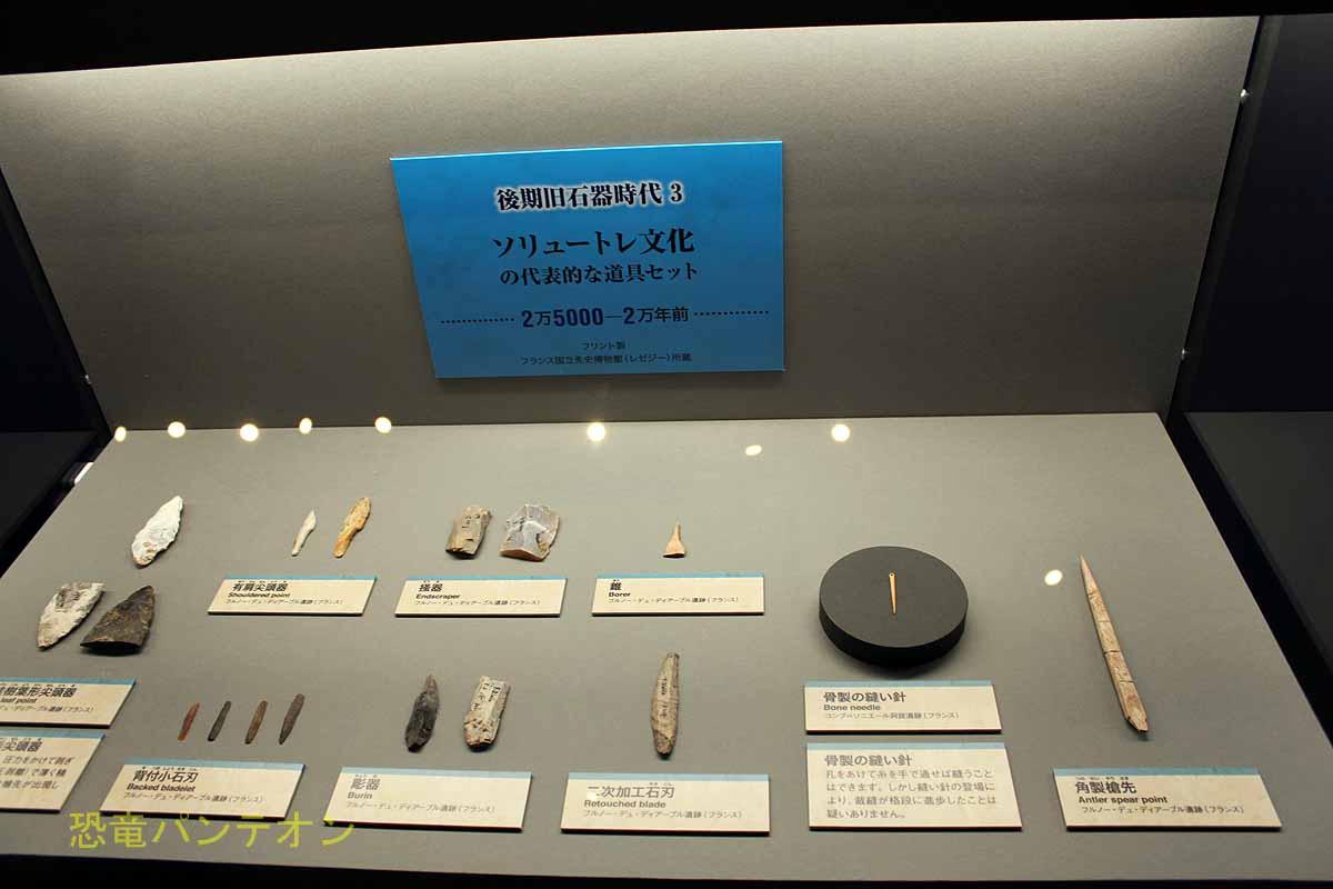 後期旧石器時代(3)ソリュートレ文化の展示
