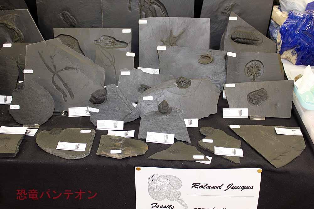 Roland Juvyns ベルギーからのお店です。比較的面白いものがあります。