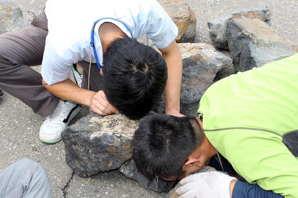 開始から1時間半後、並べてある石に何か発見
