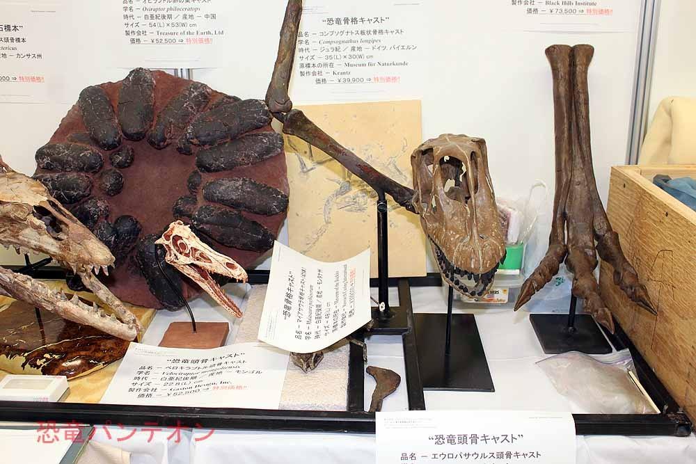 (株)ゼネラルサイエンスコーポレーション 足元にはエウロパサウルス