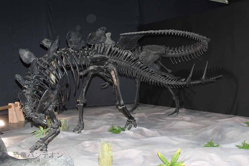 ステゴサウルスとアロサウルス