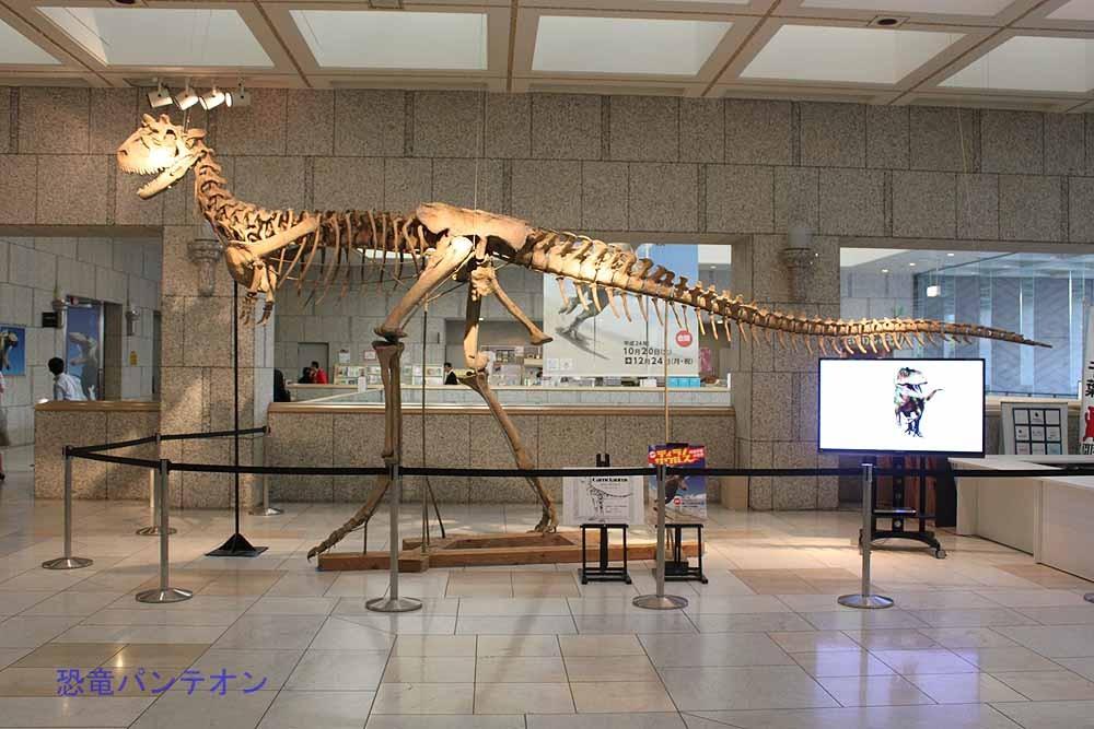 さて、あらためてカルノタウルス。