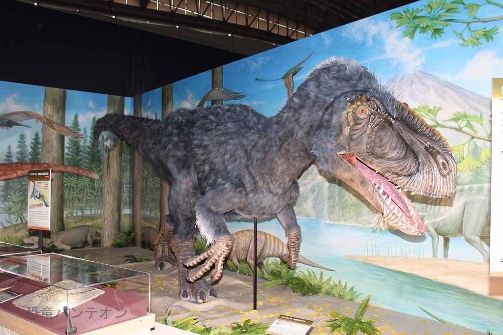 羽王竜、ユティランヌス・フアリの生態復元。このコーナー、熱河生物群の恐竜生態復元が展示されています。