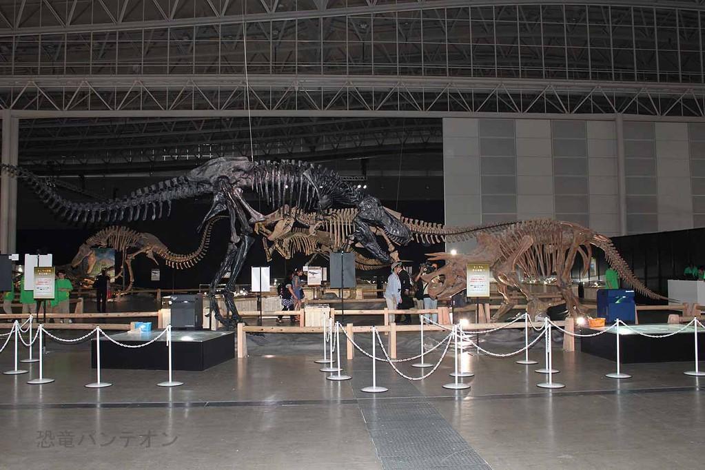 ティランノサウルス vs. トリケラトプス