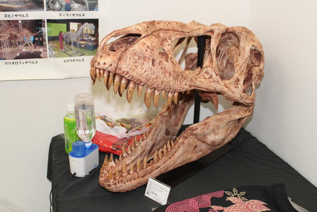 パレオサイエンス 一応、恐竜も。