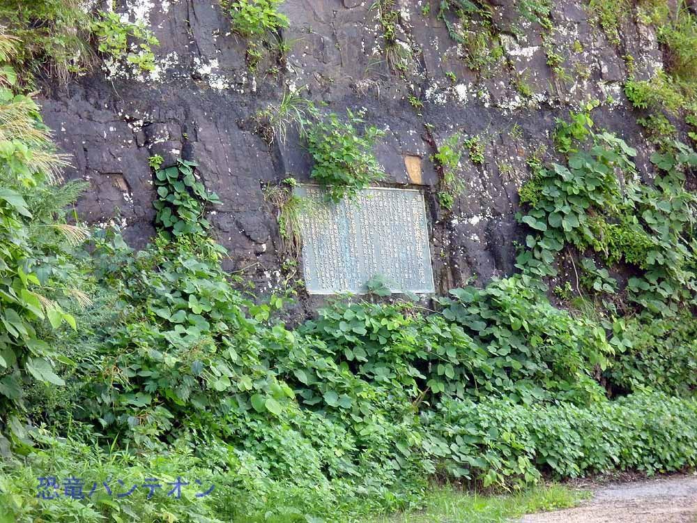 化石壁にはめ込まれた、説明プレート
