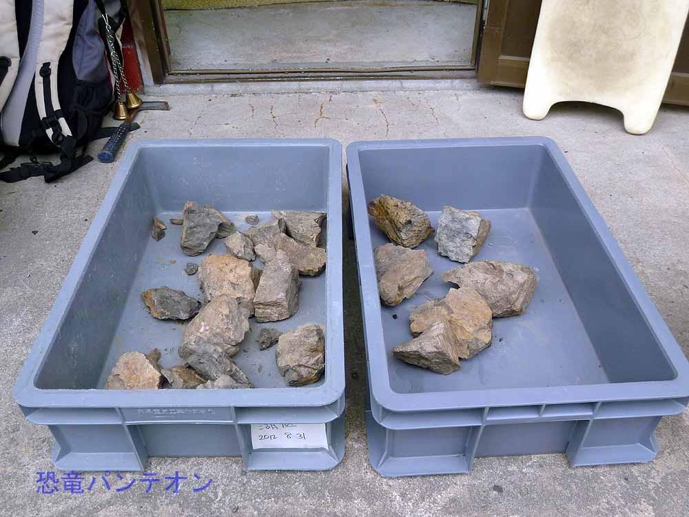 2012年に手取湖底から採取した石。午後はこれをたたく人もいます。