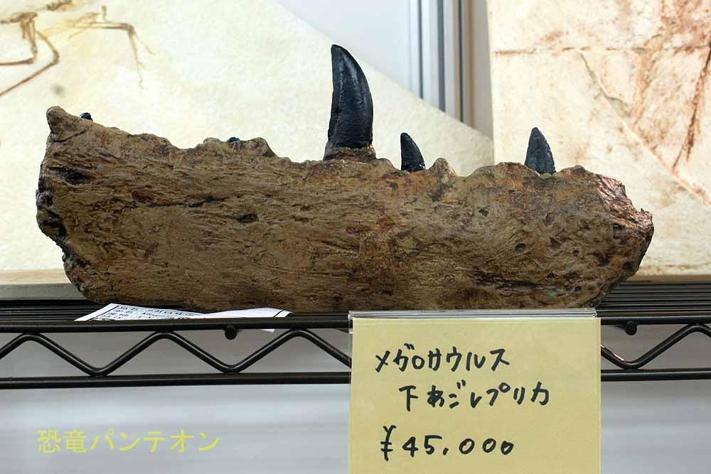 パレオサイエンス 恐竜レプリカ