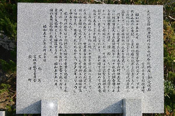 天然記念物指定の由来が記されてある。