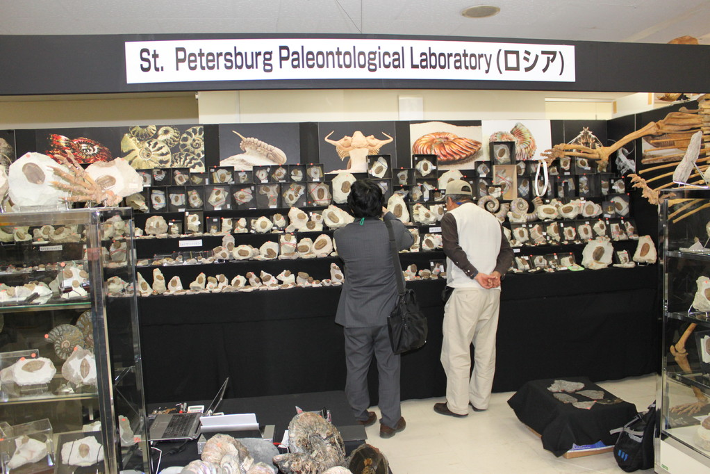 St.Petersburg Paleontological Laboratory 三葉虫が主な展示物です。