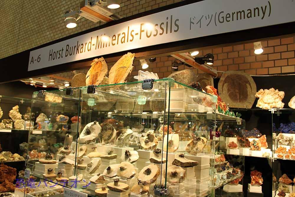 Horst Burkard-Minerals-Fossils