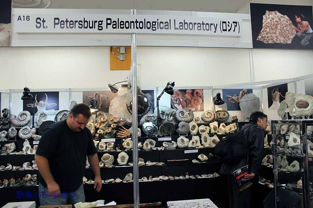 St.Petersburg Paleontological Laboratory ロシアの三葉虫のお店