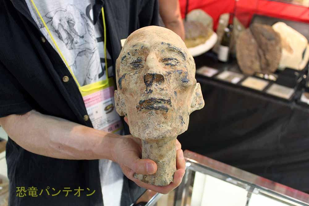 SAS ELDONIA ラムセス2世頭部レプリカ。古の生物ではあっても化石?