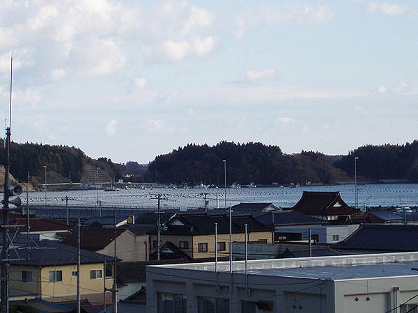 歌津駅から遠望する。この向こう側の半島が、ウタツギョリュウの産出地。