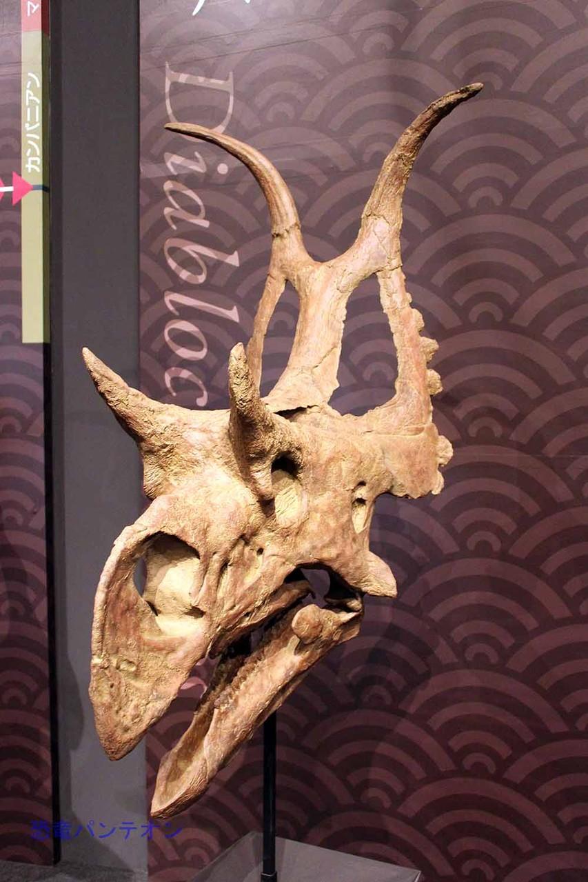 ディアブロケラトプス Diabloceratops