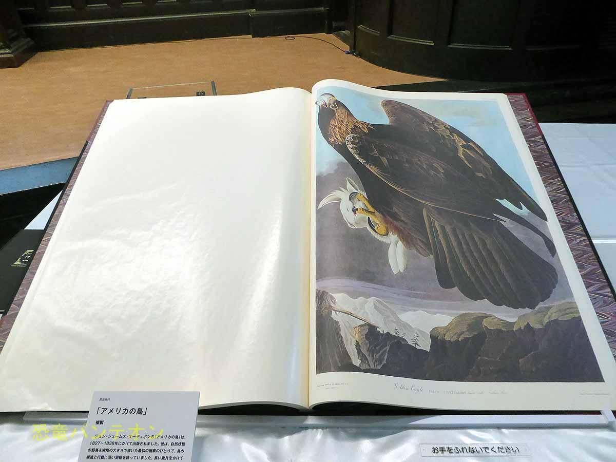 オーヂュボン「アメリカの鳥」複製本 雄松堂書店