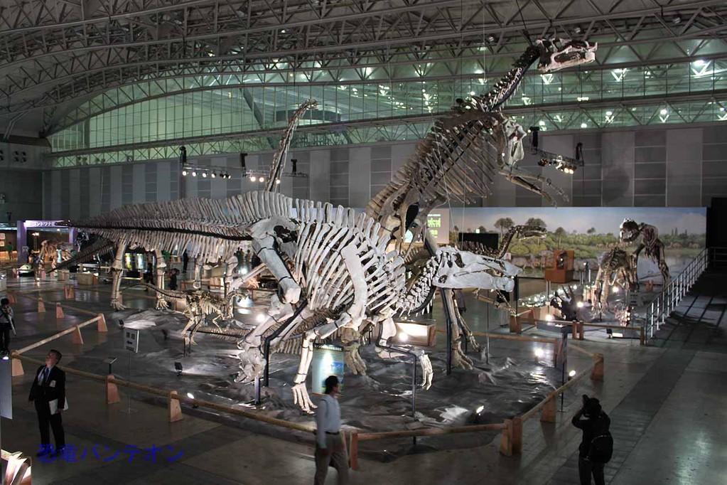 ズケンゴサウルス