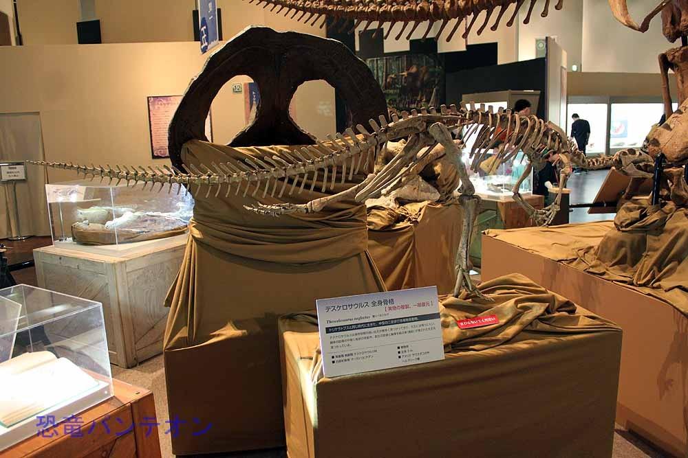 同時代の植物食恐竜、テスケロサウルス