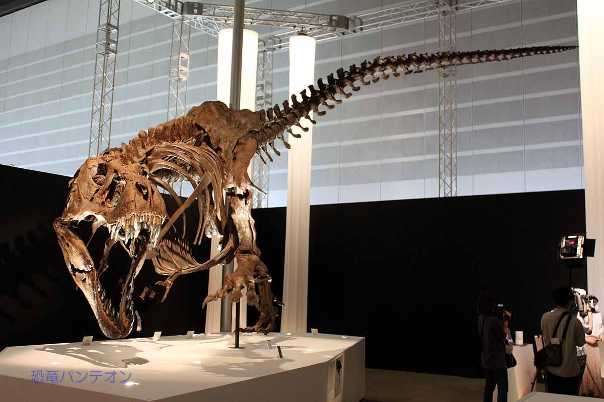 ティラノサウルス パーフェクトスタン
