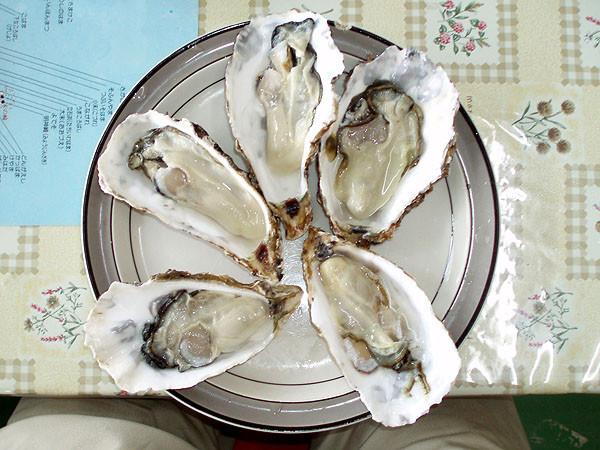 別に、生牡蠣も注文したものです。うまかった!