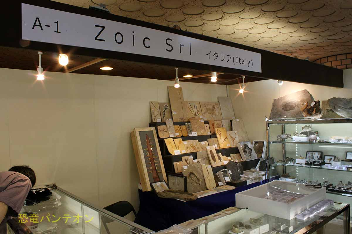 Zoic Srl の店構え