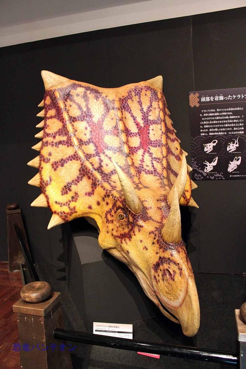 カスモサウルス生態復元(頭部) 白亜紀後期 カンパニアン