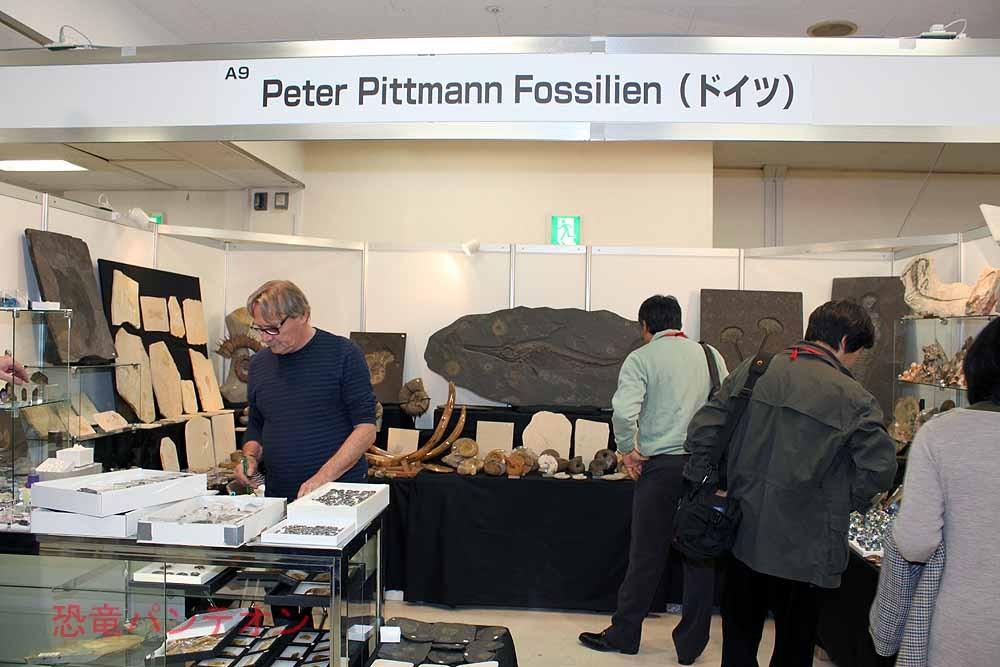 Peter Pittmann Fossilien