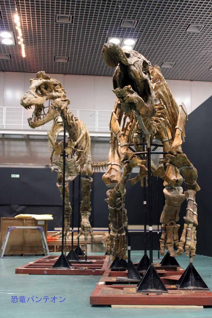タルボサウルスとサウロロフス