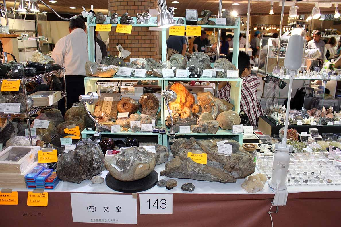 (有)文楽 143 北海道産の主にアンモナイトを扱っています。