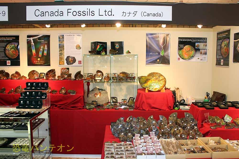 Canada Fossils Ltd. カナダのお店です。アンモライト専門店。