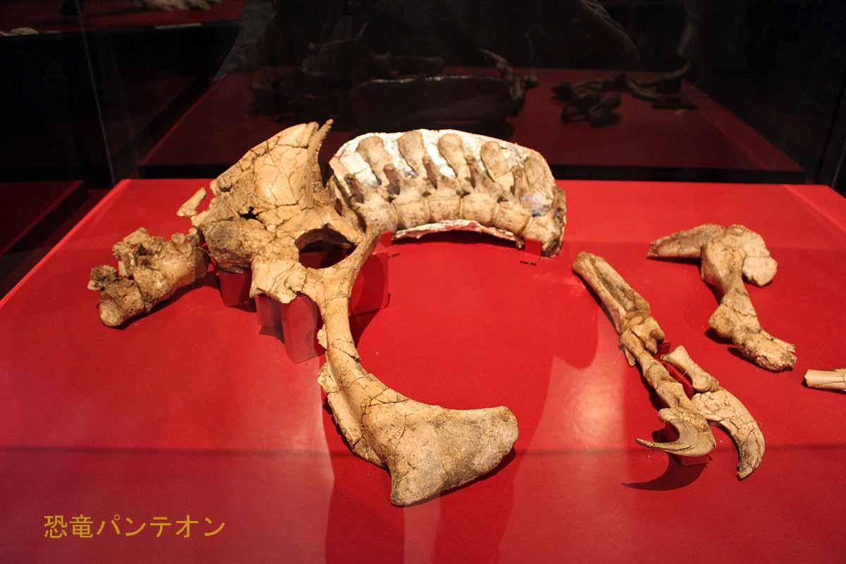 テリジノサウルス類