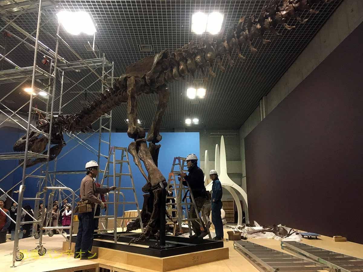 今日の取材会場。ティラノサウルス、スピノサウルスはここで組立・展示。