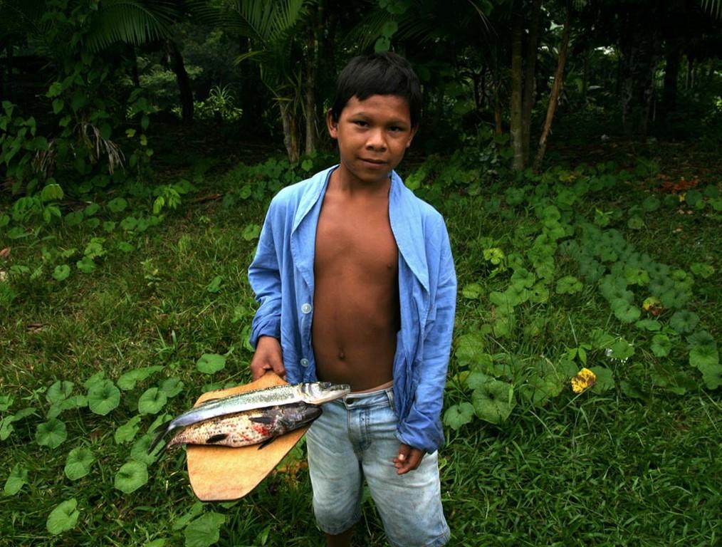 Ein Junge leistete auch einen Beitrag mit seinen Fischen.