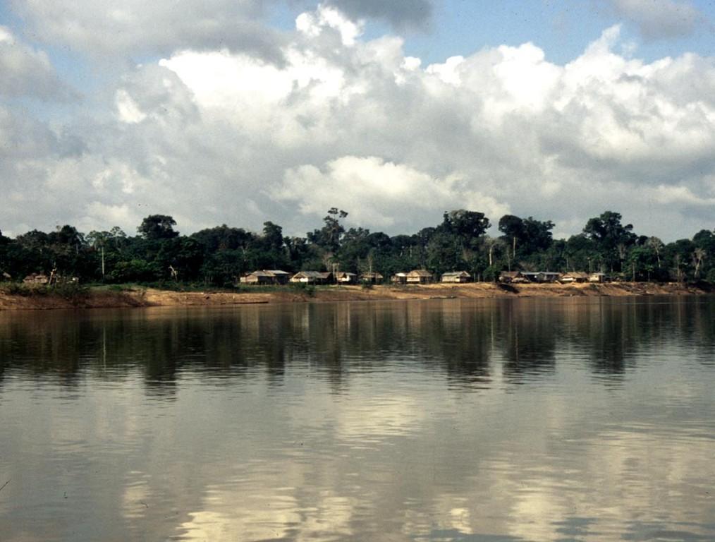 Dorf Caxuela am Rio Itaquai: In diesem brasilianischen Dorf gibt es einige Amazonasbewohner, die vom Zierfischfang leben.