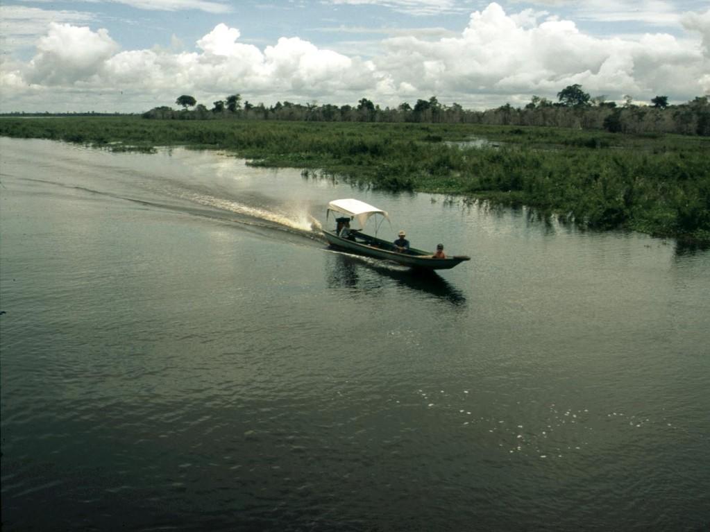 Für uns war der dahinter liegende Semayangsee wegen seiner Fischarten interessanter.