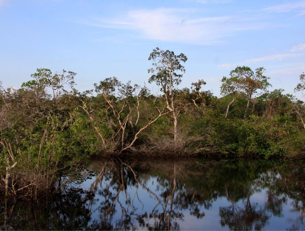 Das gesamte Gebiet in Daracuá war damals ca. vier Meter hoch überschwemmt.