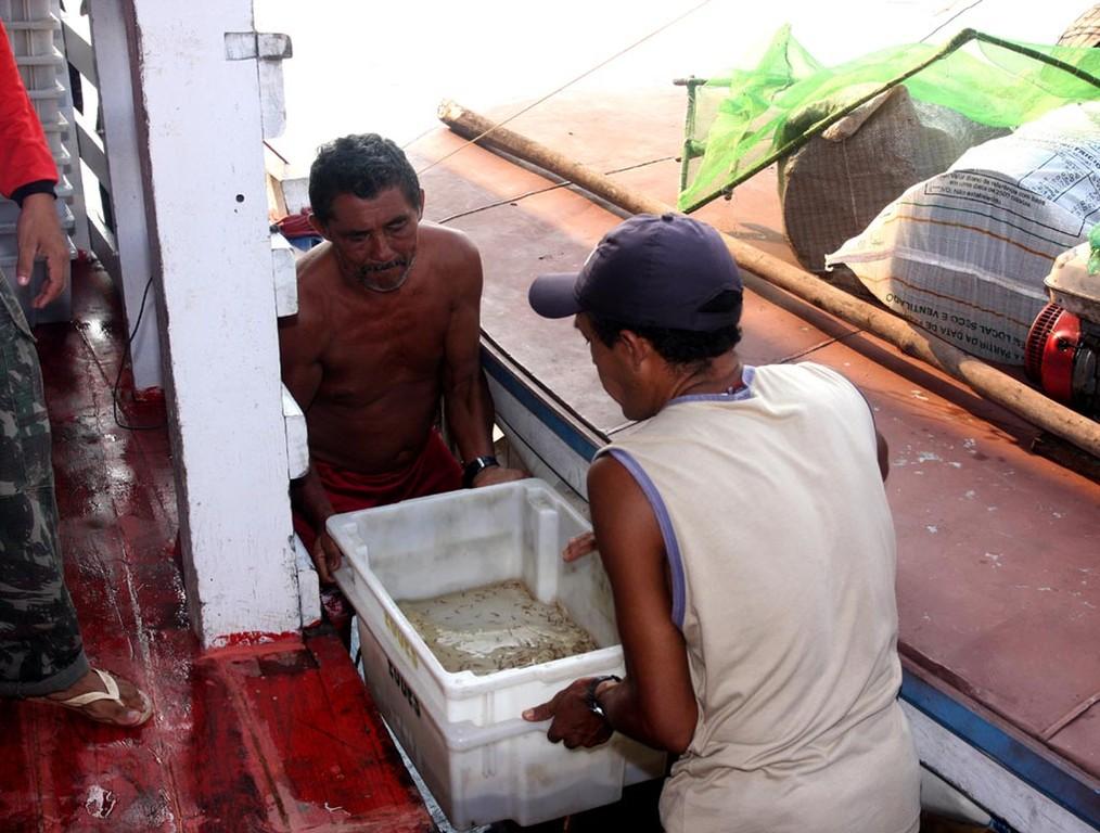 Behutsam hob man die Stapelwannen aufs Schiff.