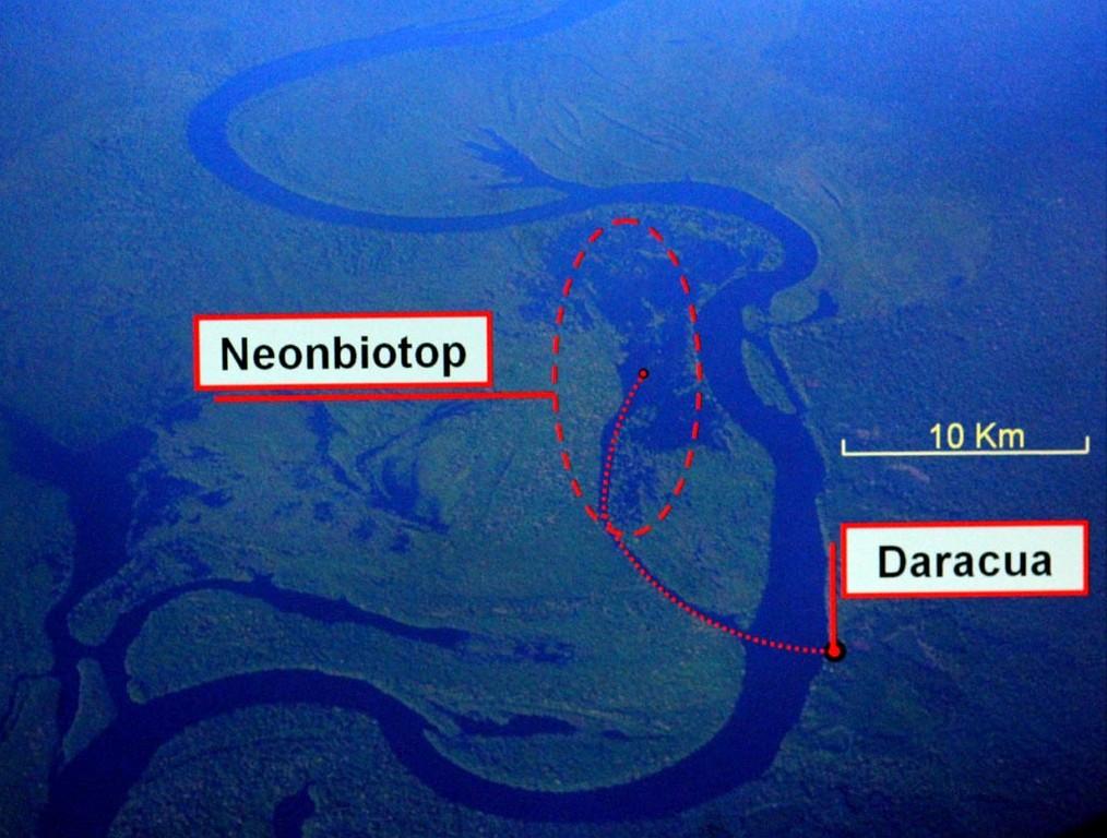 Daracuá Lageplan: Am Morgen fuhren wir mit dem Hausboot eine halbe Stunde ins Zentrum des Neonbiotops, von dort aus ging es mit dem Kanu rund eine Stunde weiter bis zum Neonfangplatz.