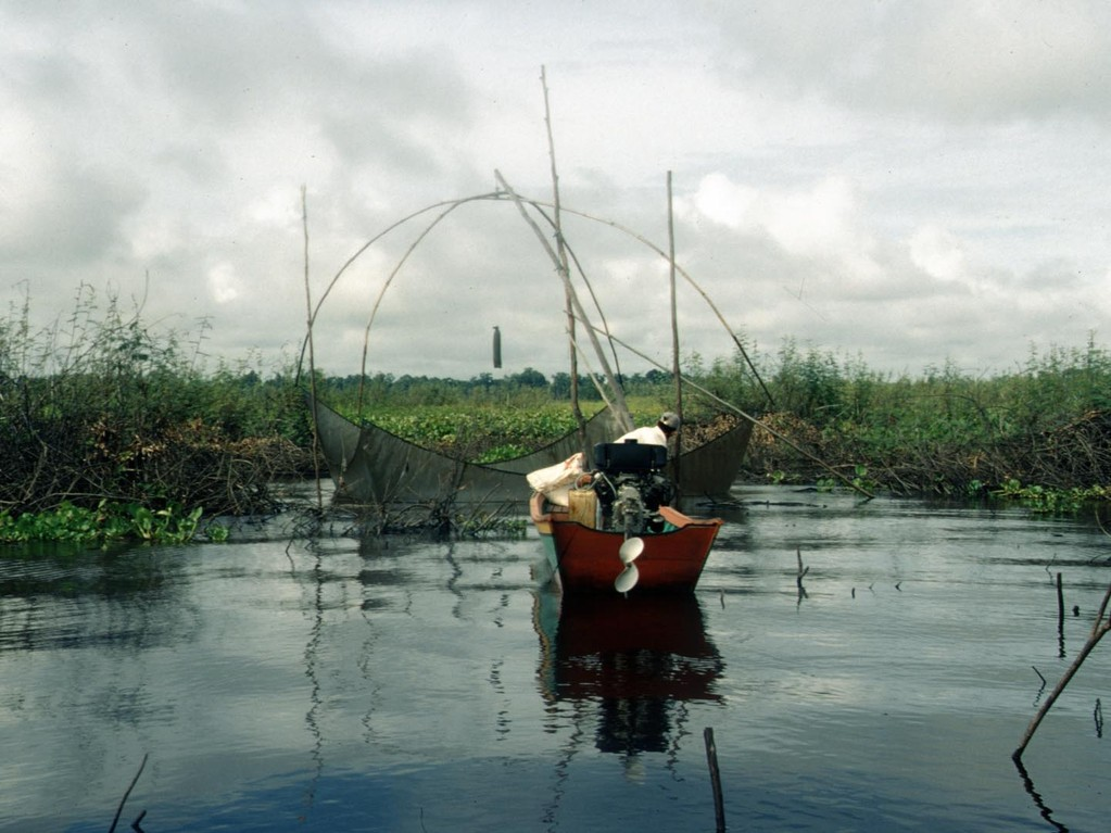 Die Fischer verwenden die typisch chinesischen Fischernetze.