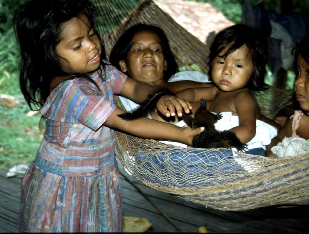 Kleine Seidenaffen sind das Lieblingsspielzeug der Kinder.
