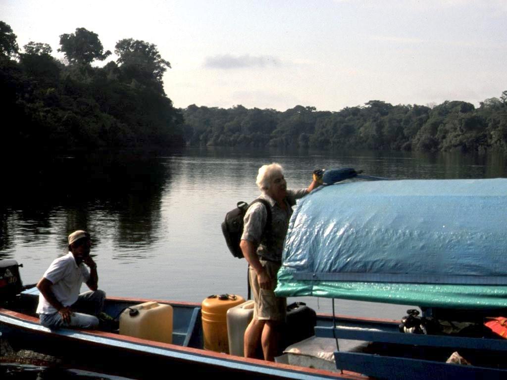 Als wir anlegten, kam ein Gelbbrustara (Ara ararauna) angeflogen und setzte sich auf unser Bootsdach. Ich dachte mir sofort, dass dieses nur ein von Hand aufgezogenes Tier sein kann.
