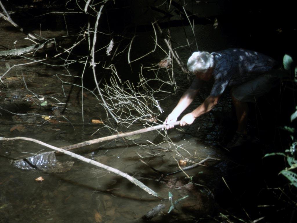 Obwohl der Bach mit Fischen voll war – das Fangen war gar nicht so einfach.